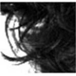 Ficha técnica e caractérísticas do produto Dexe Fibers Disfarce para Calvície Preto - 22G